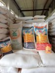 We export and wholesale flour senior and first grade from Kazakhstan